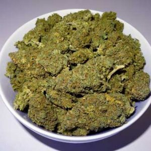 Orange_Bud_Weed